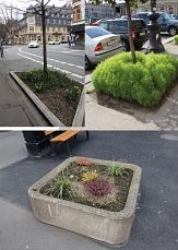 Beispiele für Baumpatenschaften©Universitätsstadt Marburg