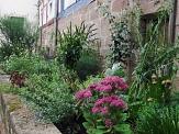 bunte Blumenrabatte vor einem Fachwerkhaus©Universitätsstadt Marburg, Fachdienst Klimaschutz, Stadtgrün und Friedhöfe