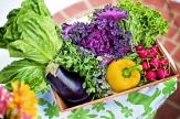 Foto von einer Kiste mit verschiedenem frischen Gemüse©Pixabay