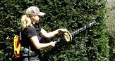 Das Foto zeigt eine Gärtnerin des DBM beim Schneiden einer Hecke mit einer Akku-Heckenschere.©DBM, Sonja Stender