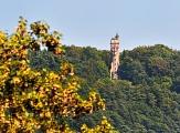 Spiegelslust-Turm im Wald©Georg Kronenberg